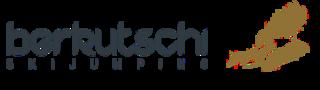 Berkutschi logo
